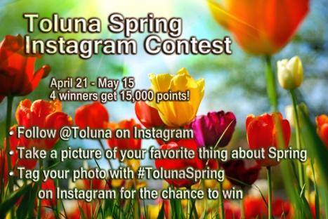toluna-spring-EN