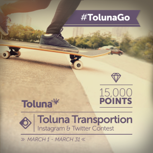Instagram Toluna Transportation_EN
