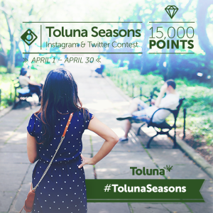 Instagram Toluna Seasons_EN